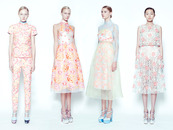 Erdem Collection